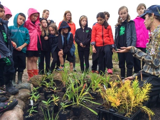 Children gathered around a plant