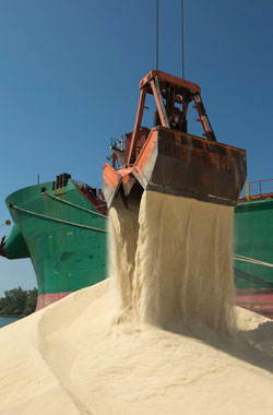 Large scoop of grain